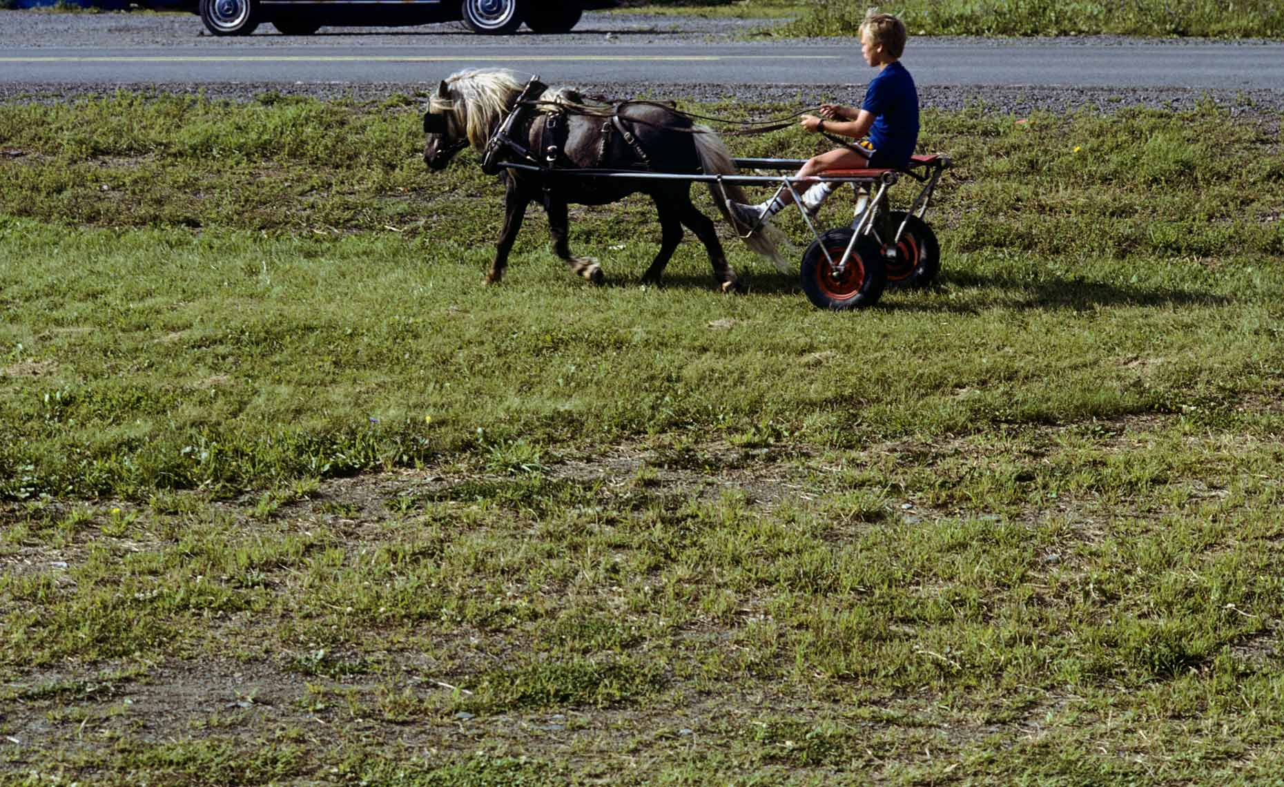 BOY-WITH-HORSE-CART